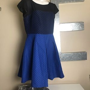 Danny & Nicole plus size fit flare polka dot dress